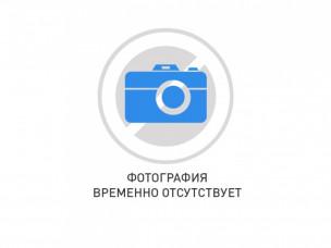 РЕ19-43-72210 и/п