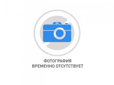 РЕ19-41-72210 и/п
